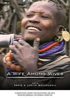 WIFE AMONG WIVES, A
